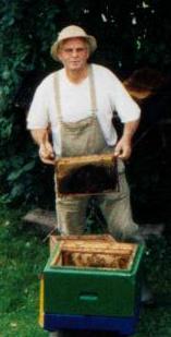 Hong Hinrich bei Arbeiten am Bienenvolk